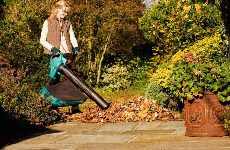 Qu'est ce qu'un aspirateur souffleur de feuilles ?